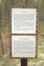 Photo: Lichen enclosure - can't let those lichens escape!