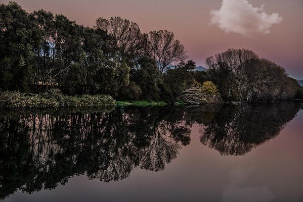 PINK REFLECTION di Irene Vallerotonda
