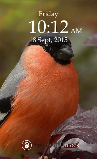 Bird Keypad Screen Lock Theme
