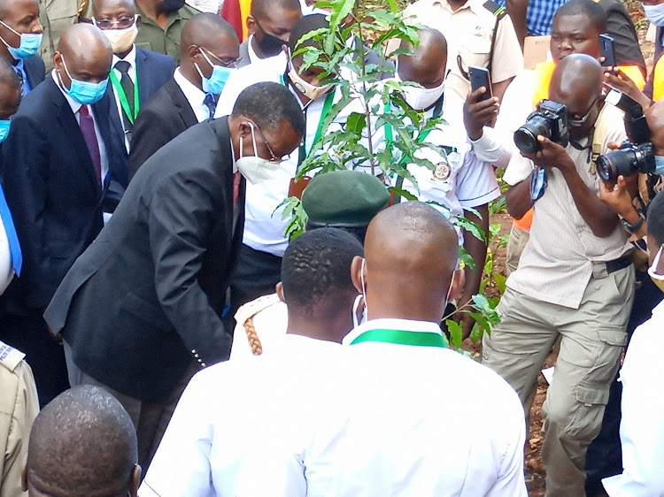 CJ David Maraga waters a tree seedling he planted at the new Kakamega law courts premises on Friday September 25, 2020