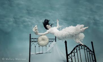 Photo: Dream