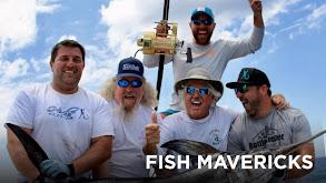 Fish Mavericks thumbnail
