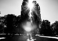 Wedding photographer Dima Levichev (Mitrofan). Photo of 22.07.2017