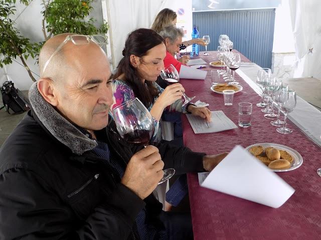 Momento de la cata de vinos y mostos del concurso.