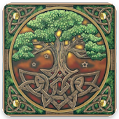 Celtic Music Radio Free App Online Android APK Download Free By Radio & Music Banelop