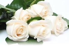 Цветов с доставкой по оптовым ценам рязань, флористика как составить свадебные букеты видео