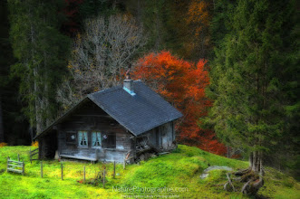 Photo: Home is not a House