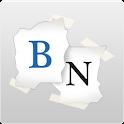 Bidnapper icon