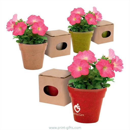 Printed Biodegradable Flower Pot & Seed Sets
