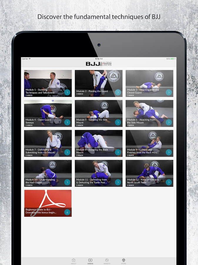BJJ Building Blocks- screenshot