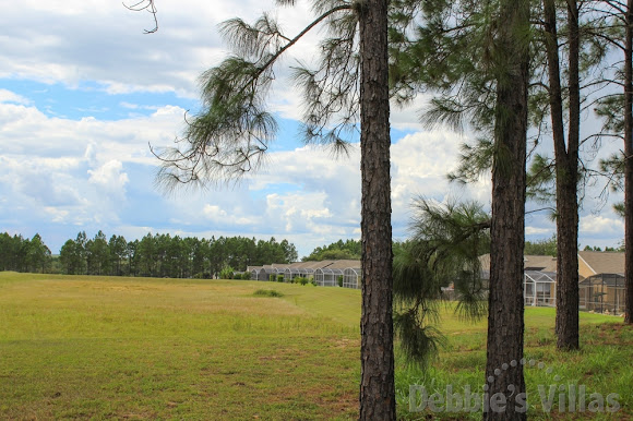 View from the back of some of the villas on Florida Pines