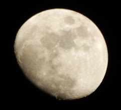 Photo: 今宵の月、十一夜月。ちょっとボケちゃった(^^;