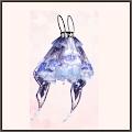 瑠璃の星雲