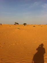 Photo: Mauritania landscape