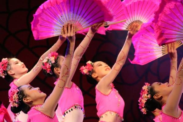 Chinese Pink Lady di Pandora17