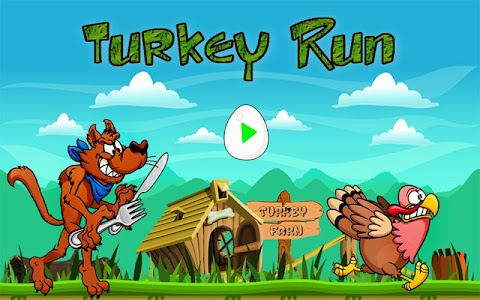 Turkey Run screenshot 6