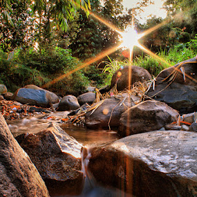 Shine n Flow by Sony Arezki - Nature Up Close Rock & Stone