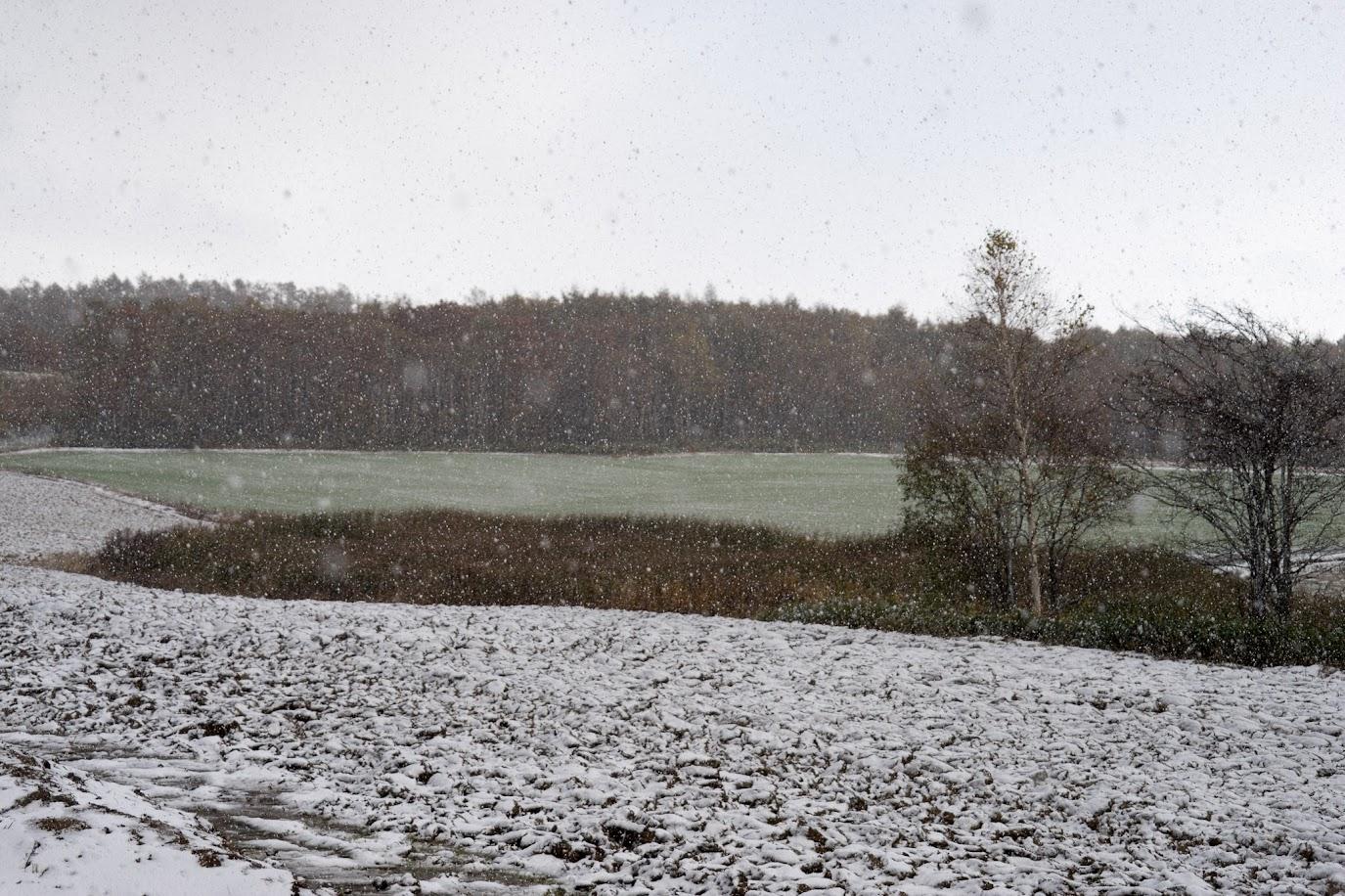 雪が薄く積もります