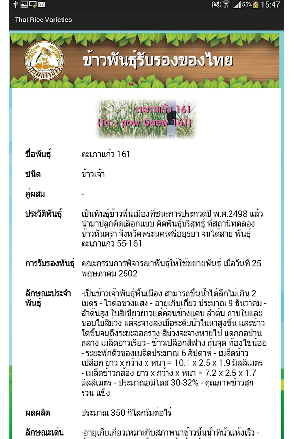 Thai Rice Varieties- หน้าจอ