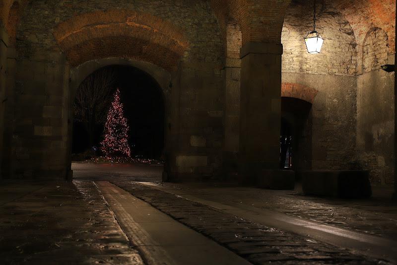 Luci di Natale di Zanna90