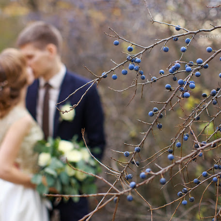Wedding photographer Sergey Chepulskiy (apichsn). Photo of 08.01.2018