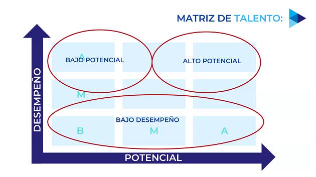 Matriz del talento bajo,medio y alto potencial.
