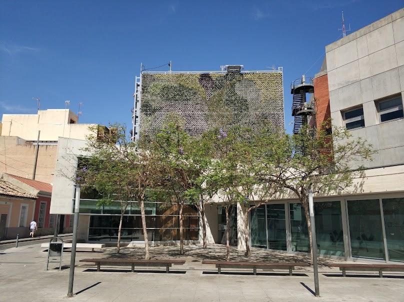 Resultado final del jardín vertical de San Vicente del Raspeig.
