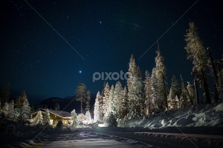 Wuksachi by Night by Ken Wade - Landscapes Forests ( winter, snow, sequoia-kings canyon national park, white, christmas, wuksachi lodge, snowscape,  )