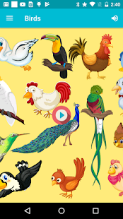 Birds - Learn, Spell, Quiz, Draw, Color and Games - náhled