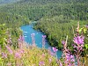 USA Alaska Itinerary 10 Days // Hiking in the Kenai Peninsula