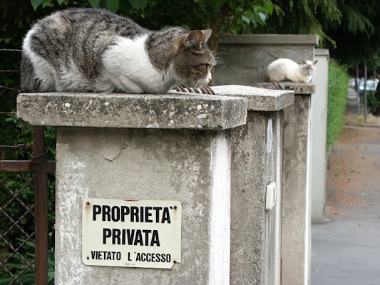 Proprietà privata ? di aqzbra