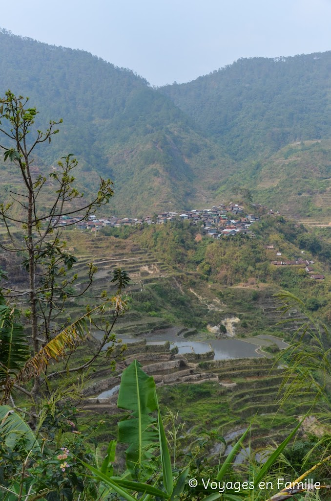 Maligcong, balade rizières, favarey