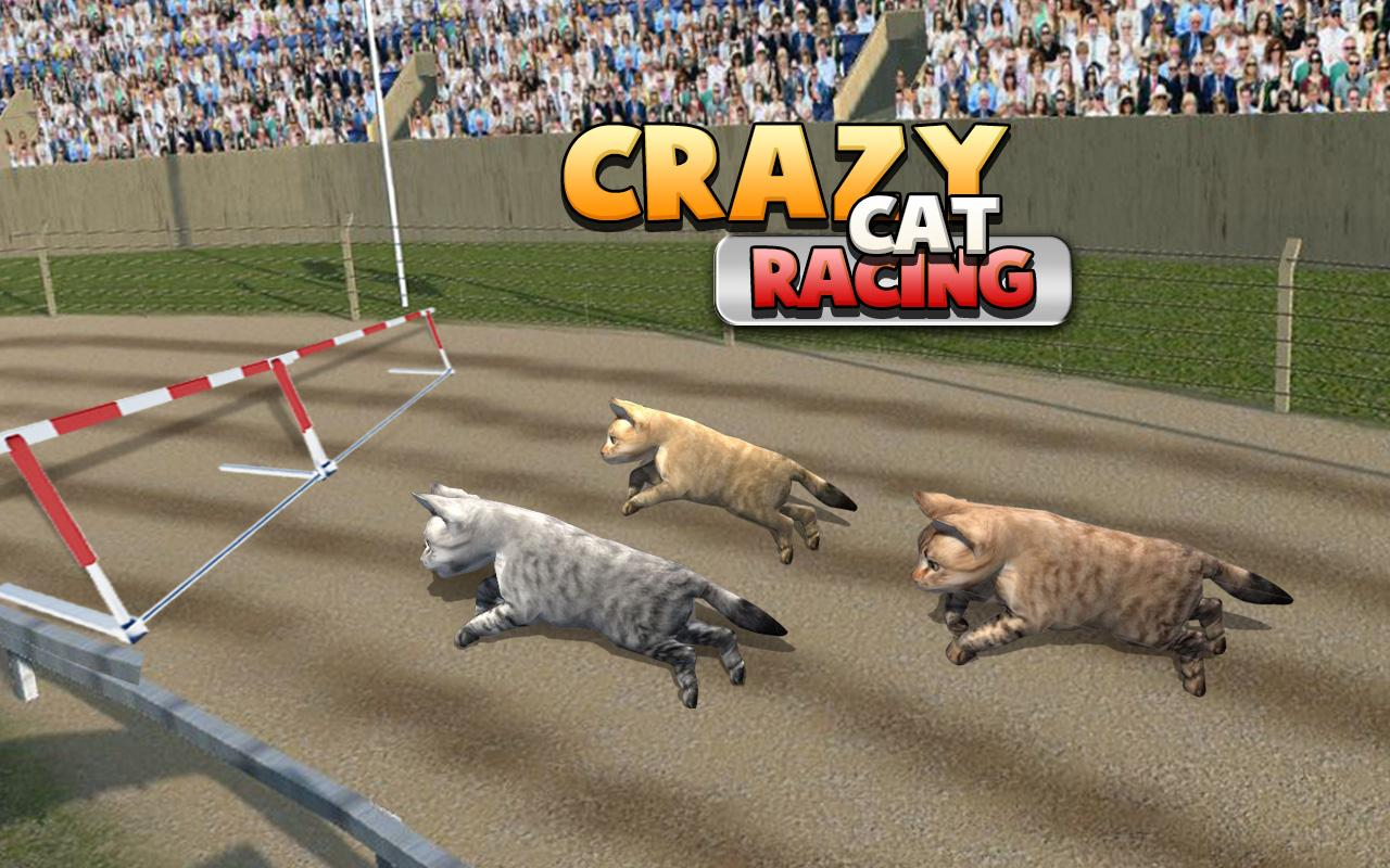 Crazy Cat - The Game for Cats! for Android - Download