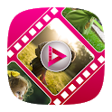 Photo video maker with music icon