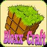 com.ua.bloxxtory.crafting