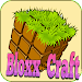 Bloxx Craft Girl icon