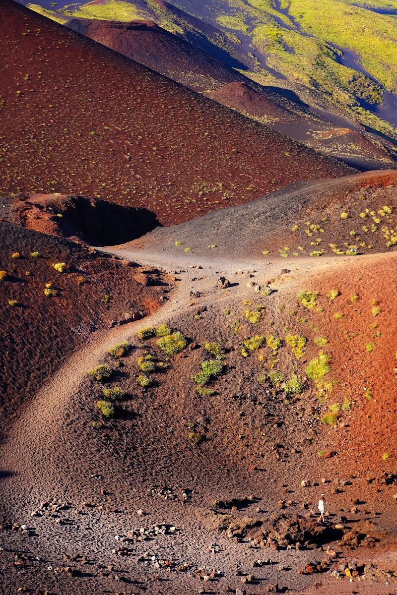 Crateri Silvestri di lucio_vetri