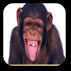 Sonidos de mono icon