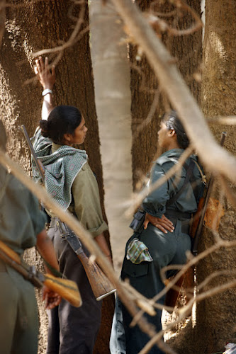 Jungles offer Maoists shelter as well as a base from which to conduct guerrilla activities.. ISHAN TANKHA