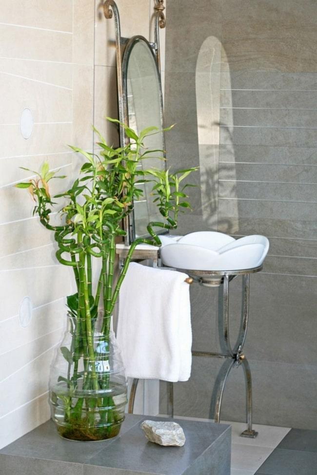 Bambu no banheiro