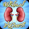 Kidney Stone Treatment Remedy icon