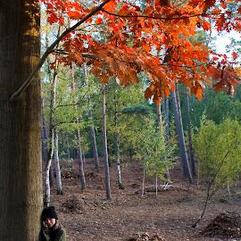 HANGING INTO FALL by Paula NoGuerra - People Portraits of Women ( fall, portraits of women, nature, tree, autumn colors, autumn, portrait )