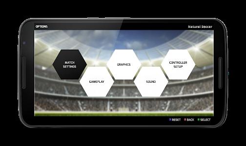 Natural Soccer - Fun Arcade Football Game 이미지[4]