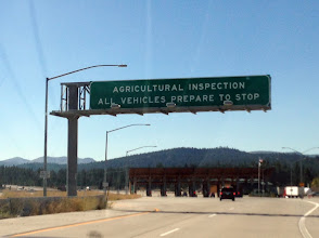 Photo: Agricultural inspection, something you don't see everyday. Will they confiscate the kids' pine cones?