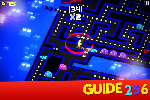 Guide for Pac Man 272
