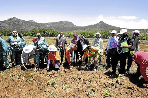 Back to roots: Former development and land reform minister Gugile Nkwinti, fifth from right, handed over a section of Gallawater Farm near Komani, Eastern Cape to beneficiaries in 2016. Picture: TEMBILE SGQOLANA
