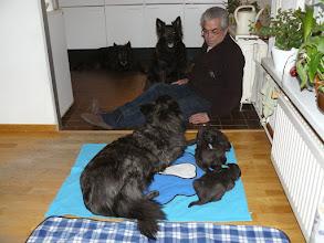 Photo: Wil en 4 generaties Oscarli hondjes