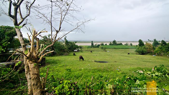 Atulu Iguig