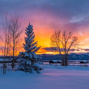 Wonderful Sunset by Chad Roberts - Landscapes Sunsets & Sunrises ( sky, winter, colors, sunset, snow, sundown, evening,  )