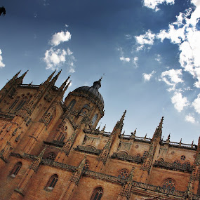 Salamanca Cathedral by Aaron Gould - Buildings & Architecture Public & Historical ( clouds, salamanca, old, sky, cathedral, spain )